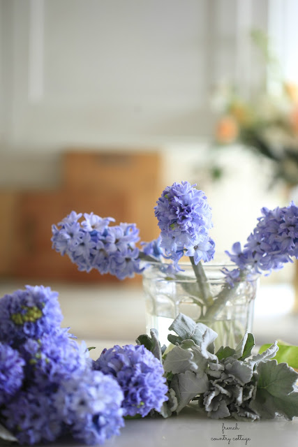 glass vessel with blue hyacinths