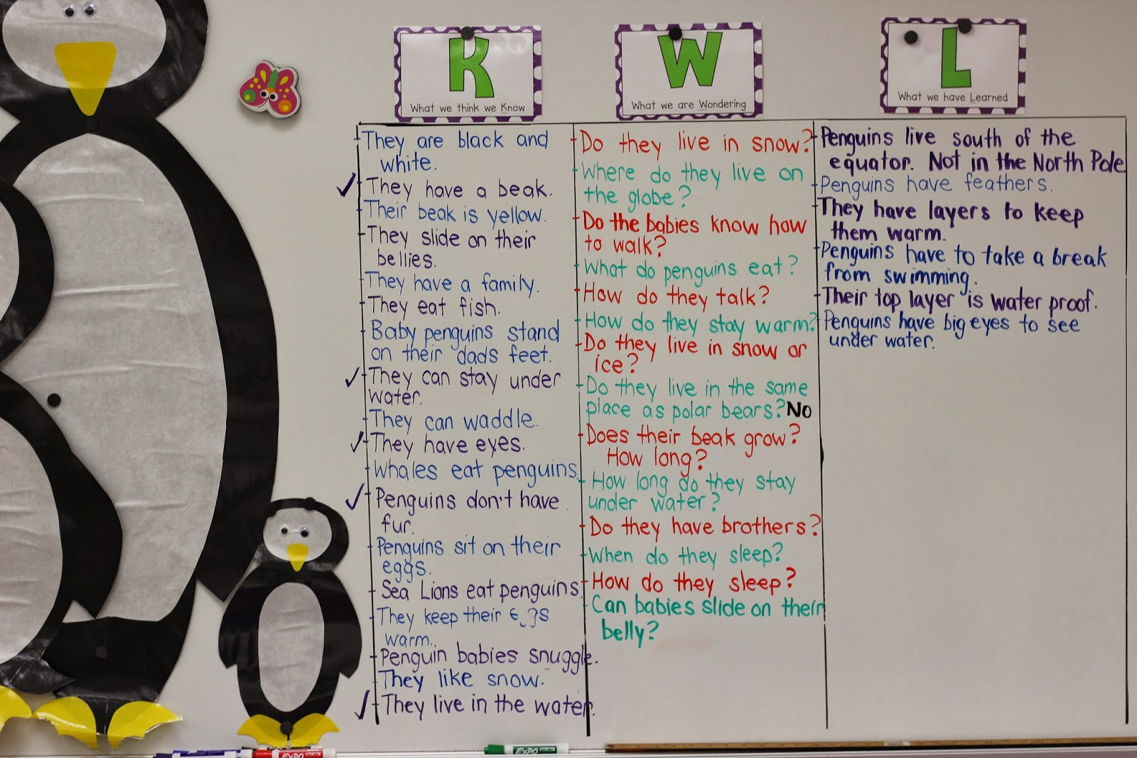 Kindergarten Smiles Starting Our New Unit Penguins