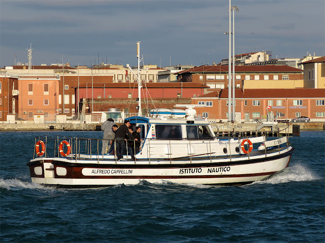 Alfredo Cappellini motor boat, Nautical Institute of Livorno, port of Livorno