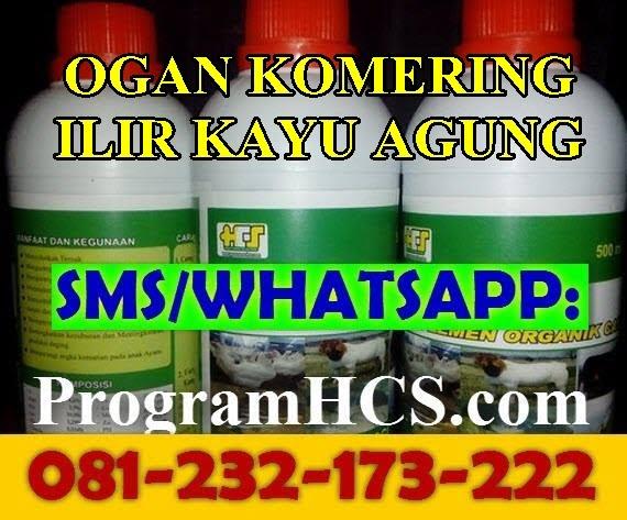 Jual SOC HCS Ogan Komering Ilir Kayu Agung