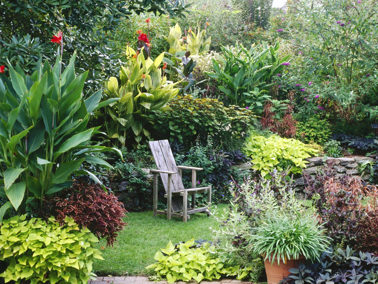 Backyard Decorating Ideas Home Vida Verde Mini Hortas E Jardins Fotos