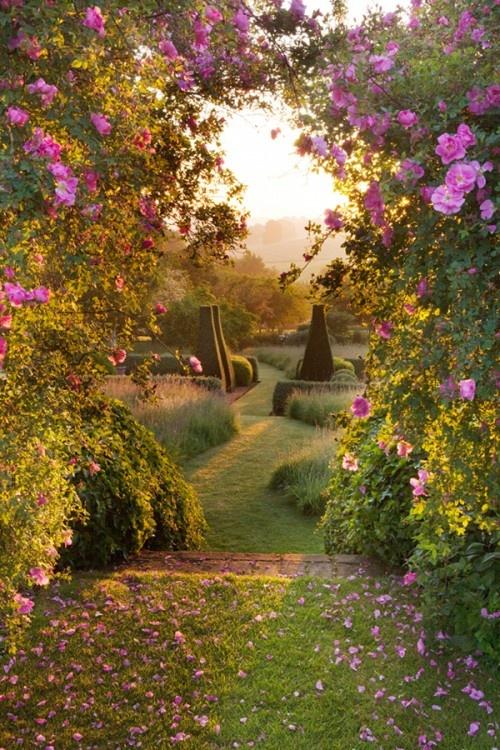 Pettifers Garden