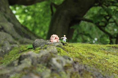 Forêt de Soignes, forêts imaginaires, Histoires de faunes, Iacchos, mystères dionysiaques, têtes sanglantes,