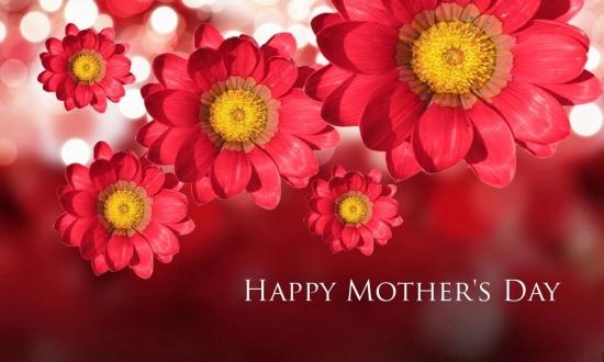 Festa della Mamma - Letychicche