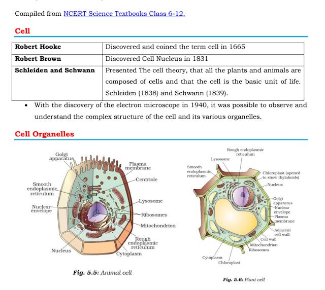 Ncert Biology Class 12 Pdf