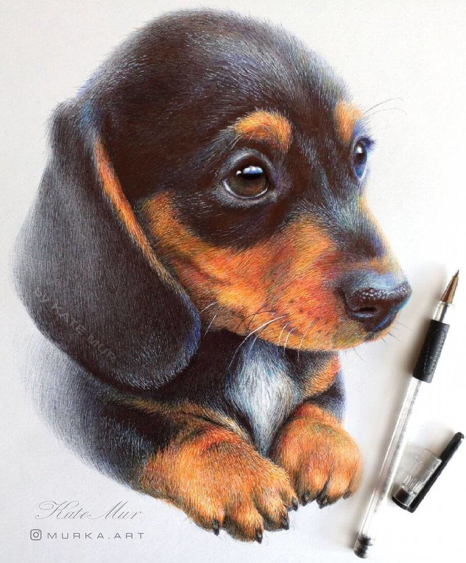 01-Basset-Hound-Puppy-Kate-Mur-Animal-Art-with-Pencil-Ballpoint-Pen-and-Paint-www-designstack-co