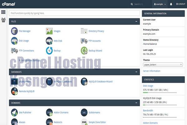 support hosting