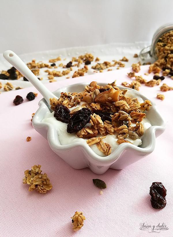 granola-casera-pasas-nueces-semillas