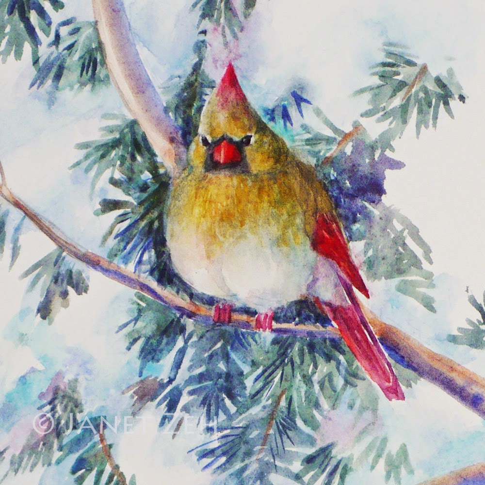 Northern Cardinal in the Snow watercolor painting detail