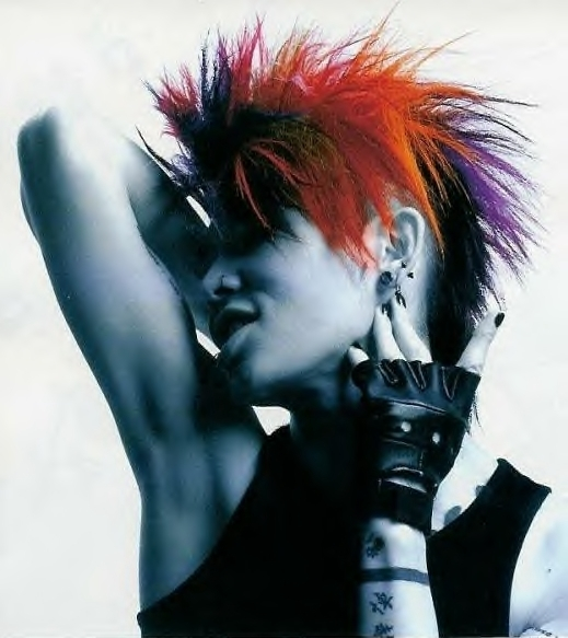 Hair style 2012: Punk Hair Color Style Fashion