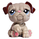 Littlest Pet Shop Multi Pack Bulldog (#2283) Pet