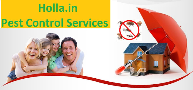 Pest Control Services in Jodhpur