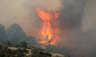 Πύρινη κόλαση στη Χαλκιδική: Η φωτιά κυκλώνει τη Σάρτη – Εγκαταλείπουν τα σπίτια τους οι κάτοικοι