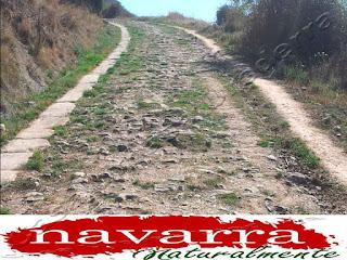204 Puente Romano y Calzada Romana  Cirauqui Camino Santiago Francés