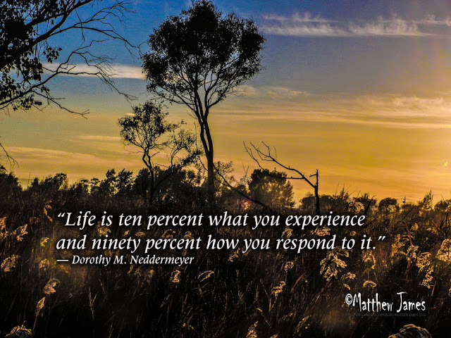 """""""Life is ten percent what you experience and ninety percent how you respond to it"""" - Dorothy M.Neddermeyer"""