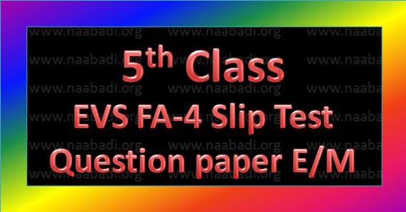 FA-4 5th Class EVS Slip Test Question Paper E/M