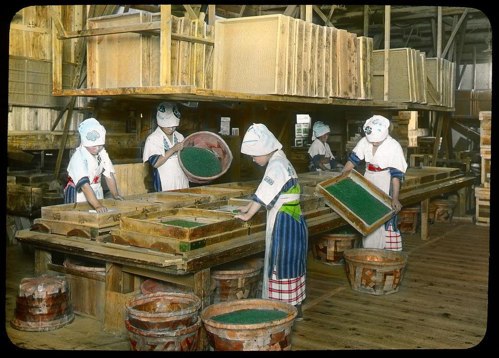 Chùm ảnh xưa về trà Nhật Bản 13