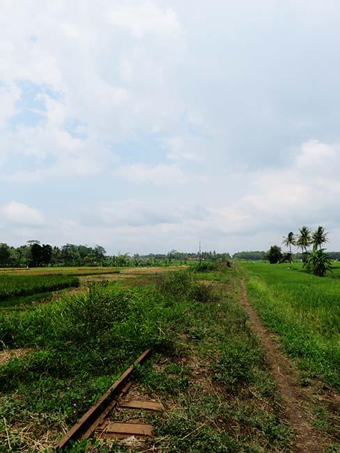 Jalan Setapak Samping Rel