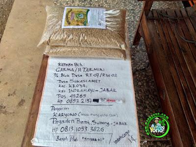 Benih pesanan  H. TARMIN Indramayu, Jabar.  (Sebelum Packing)