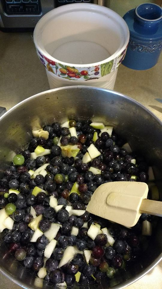 Making Concord Jam