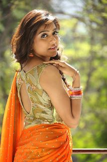 Actress Vithika Sheru Pictures in Saree at Paddanandi Premalo Mari Press Meet CelebsNext 3.JPG
