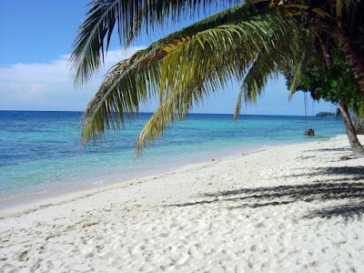 Image result for tomini bay, There are so many reason that makes you want to come to this place. In Indonesia, Tomini bay, is the largest bay.It is estimated about 6.000.000 hectare and have 90 island in it. Tomini bay also have a nickname by it local which is a heaven on earth.  In Tomini bay, there are several thing you should do, and those things are the reason that makes you never forget about this place. First is, Tomini bay is a place for many coral reef. The underwater organism is preserved as a national treasure. Second is, Tomini bay is also a place for many different aquatic biota, such as, coral reefs, fish, squid and any other. You can enjoy the view by diving in it. You will see a spectacular scenes underwater.