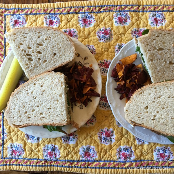 leftover sandwiches of Lechon Asado (pork shoulder) from Casa Cubana in Oakland, California
