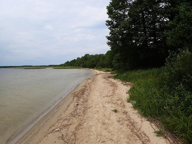 Brzeg Wielikiego Zgoranskiego Jeziora
