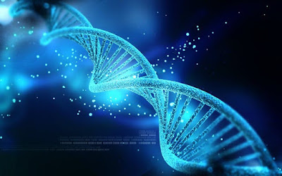 Molecular Changes To Your Genes