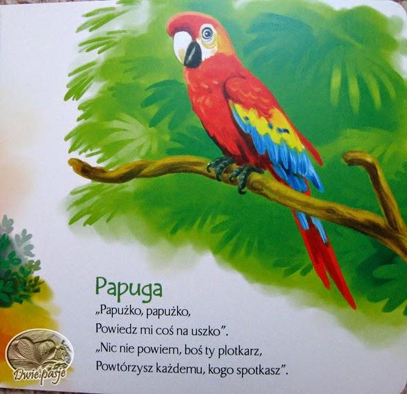 Dwie Pasje I Tysiące Marzeń Nocnikowe Lektury Zoo