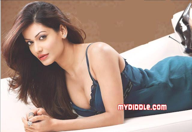 Butt Payal Rohatgi nudes (29 pics) Is a cute, Twitter, bra