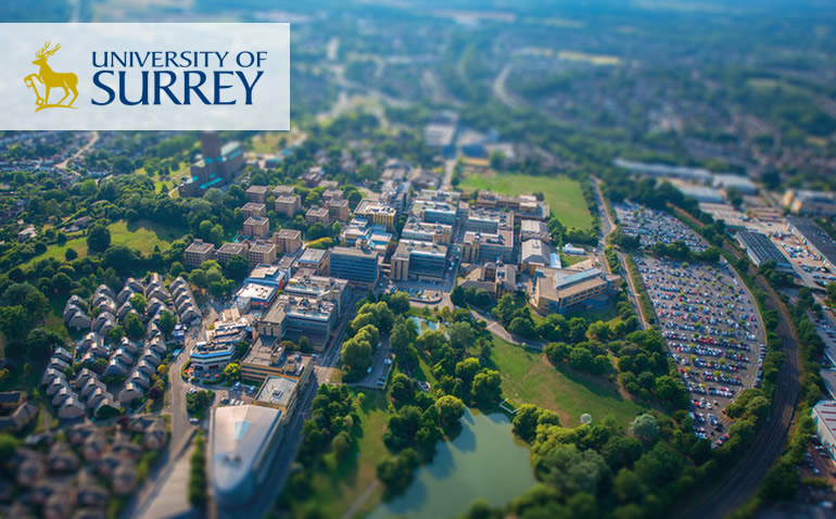 Surrey International MSc Scholarship for Psychology in UK, 2019