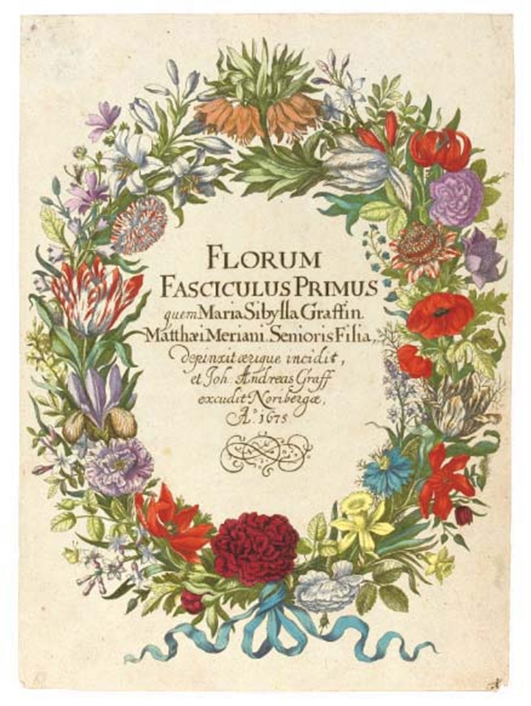 biography maria sibylla merian essay Maria sibylla merian: how a 17th century late bloomer became the world's thanks so much for posting this biography i did an essay on her work for my.