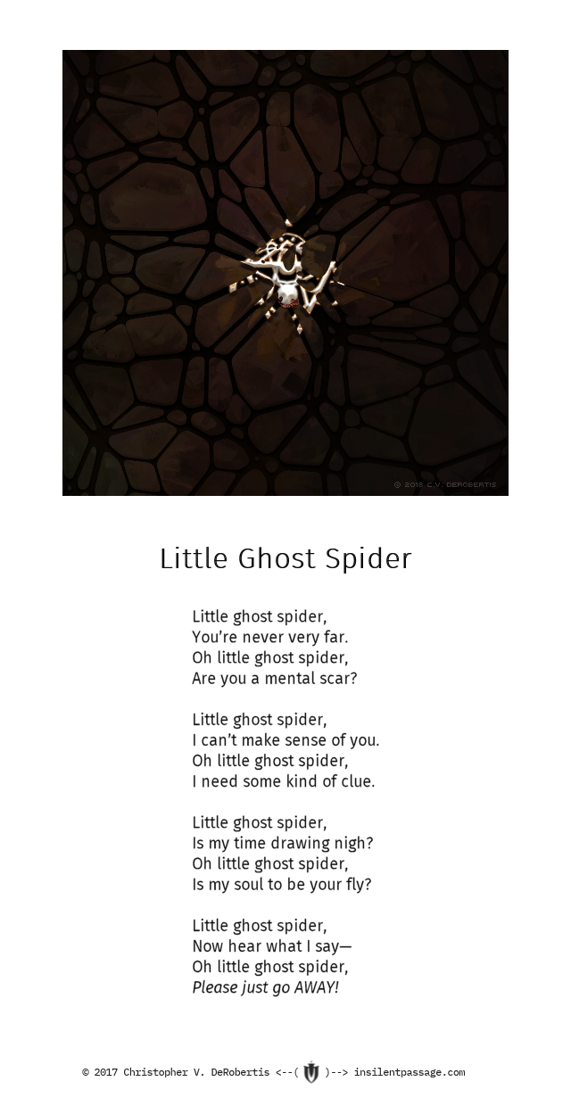 Little Ghost Spider Copyright 2018 Christopher V. DeRobertis. All rights reserved. insilentpassage.com