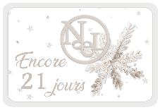 Le Noël blanc de DCS - 4