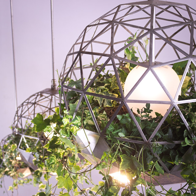 Geodesic Terrariums Lights/Plants