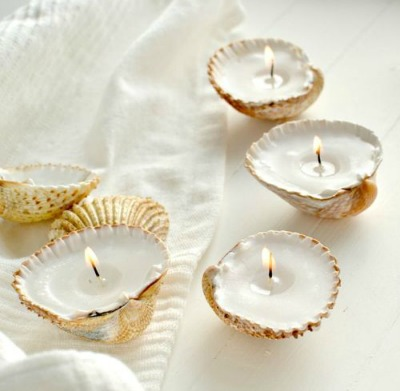 Best Seashells for Candle Making