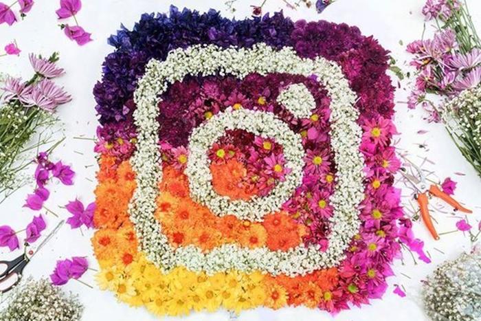 Ferramenta gratuita para analisar dados do Instagram