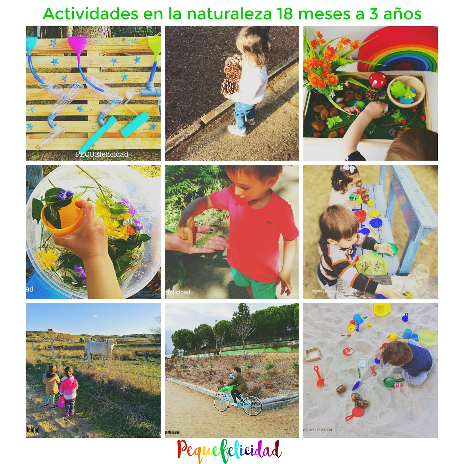 Pequefelicidad 100 Actividades En La Naturaleza Para Ninos