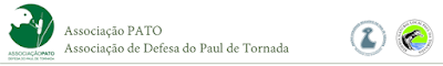 http://www.associacao-pato.org/atividades.html