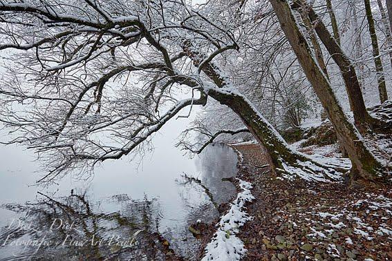 Erster Schnee des Jahres
