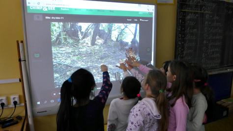 http://blog.zooniverse.org/2016/02/19/primary-school-zooniverse-volunteers/