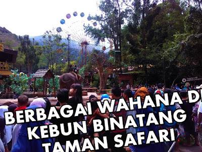 wahana taman safari bogor indonesia