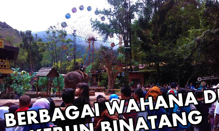 Mengunjungi Berbagai Wahana Taman Safari Bogor