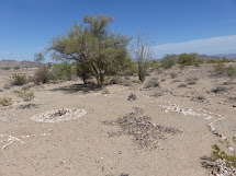 Land Cruising Adventure Quartzsite Arizona Camping In