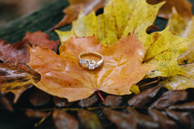 Yellow Gold Engagement Ring Bear and Sparrow Photography