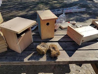 Diferentes modelos de cajas nido