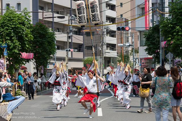マロニエ祭りで浅草雷連を撮影した写真