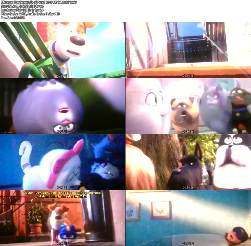 The Secret Life of Pets 2 2019 HDCAM x264 | 480p 300MB | 100MB HEVC Screenshot