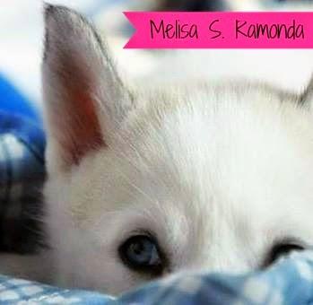 http://entrelibrosytintas.blogspot.com.es/search/label/Melisa%20S.%20Ramonda